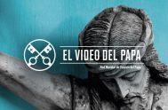 05/06/2020 –Es por las personas que sufren la intención de oración del Papa Francisco para este mes de junio, quien nos pide que…