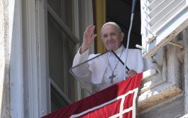 05/07/2020 –El Papa Francisco invitó este Domingo a acudir a Jesús quien ofrece descanso y alegría verdadera, y no solamente…