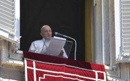 05/07/2020 –Al finalizar el rezo del Ángelus de este Domingo 5 de julio, el Papa Francisco animó a las autoridades…