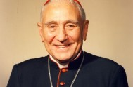 28/10/2014 – En las últimas horas se hizo público que el Vaticano se encuentra analizando la beatificación del cardenal argentino Eduardo Pironio, a…