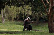 20/07/2018 – En el país hay seis millones de personas mayores de 60 años. Muchas de ellas viven o se sienten solas. Se…