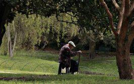 20/07/2018 - En el país hay seis millones de personas mayores de 60 años. Muchas de ellas viven o se sienten solas. Se trata esta de una problemática mundial relacionada con la infelicidad, la angustia y hasta la muerte en las personas mayores. El envejecimiento de la población Nuestro país no es ajeno a la triste realidad que viven mucho…