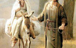 """30/11/2018 –El sacerdote jesuita habló del verdadero significado de estar """"atentos y vigilantes"""" para la venida de Jesús. Y, a…"""