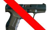 07/11/2018 –En Argentina se registran 9 muertos por día por el uso de armas de fuego. La semana pasada la ministra de Seguridad…