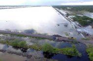 22/01/2019 – Si bien recién cuando bajen las aguas se podrá tener precisiones respecto a las pérdidas que dejó la inundación, desde la…