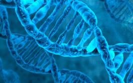 """26/02/2019 – El argumento del Ejecutivo es que """"el ADN para todos es la huella digital del siglo XXI"""". A…"""