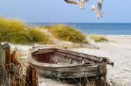 Cuando la experiencia de lo que se ha vivido en la barca, se pone ante Dios, enseña. Necesitamos invitar a Jesús…