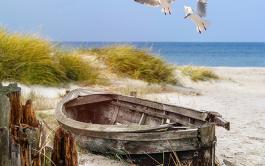 Cuando la experiencia de lo que se ha vivido en la barca, se pone ante…