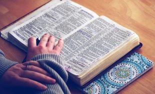 Jesús volvió a Cafarnaún y se difundió la noticia de que estaba en la casa.Se reunió tanta…
