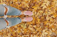 El otoño es una etapa donde el cambio y la reflexión llaman a nuestra puerta, donde es oportunoobservar profundamente hacia el interior de…