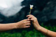 Quizás se trate de abrir las puertas para encontrar el amor. Llega un momento, después de meses, o quizás años, en donde nos…