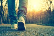 Es necesario convencerse: el Espíritu Santo es plenitud vital, fuerza, gozo. No hay nada más vivo, más real, más lleno de energía. Necesito…
