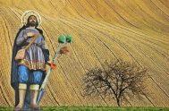Como cada 15 de mayo, la Iglesia celebra a San Isidro Labarador.Es el patrono de los agricultores del mundo. Le pusieron ese nombre…