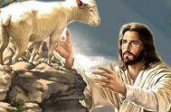 EL BUEN PASTOR oveja fuera del corral, alejada de todo oveja que creía ser feliz por revelarse a ti oveja ciega que caminó…