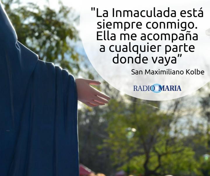 14 Frases De Amor De Maximiliano Kolbe A María Rm Joven