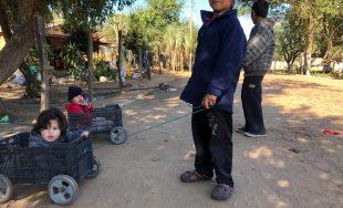 12/04/2019 – En San Carlos Centro, una localidad de poco más de 11 mil habitantes en la…