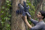 El ingeniero Topher White comparte una forma sencilla de detener la deforestación, a partir del uso de celulares viejos.   En…