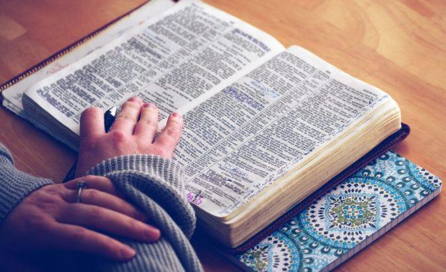 """Jesús dijo: """"Te alabo, Padre, Señor del cielo y de la tierra, por haber ocultado estas cosas a los sabios y a los prudentes y haberlas revelado a los pequeños. Sí, Padre, porque así lo has querido. Todo me ha sido dado por mi Padre, y nadie conoce al Hijo sino el Padre, así como nadie conoce al Padre sino…"""