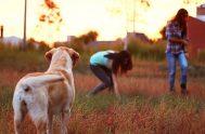Un amigo fiel es un refugio seguro: el que lo encuentra ha encontrado un tesoro. Un amigo fiel no tiene precio, no hay…