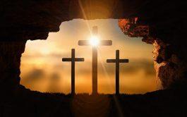 Pedro sonríe. Tu resurrección lo llena de gozo.  Necesita compartirlo Juan está de rodillas, aunque en el fondo quiere,…